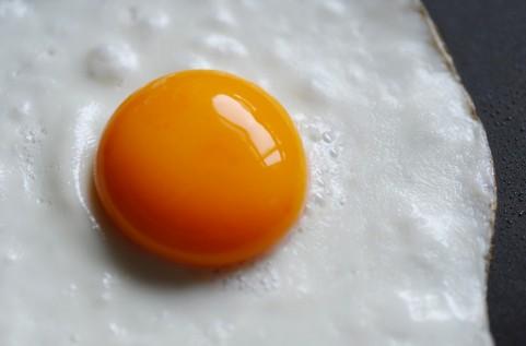 有精卵と無精卵の違いってなに?