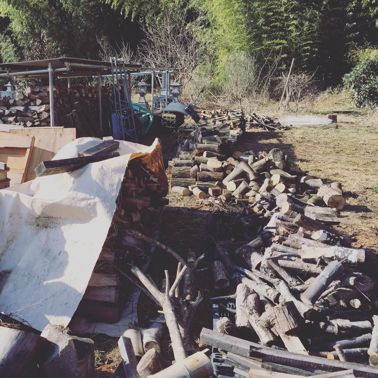 その名の通り宝の山!自伐林業は地方創生の武器か?